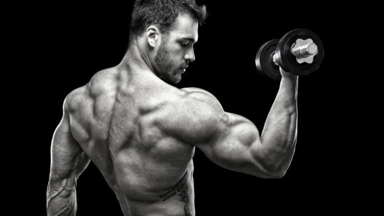 Muskeln und mehr! Der Ernährungsblog, der im Internet am meisten auffällt!